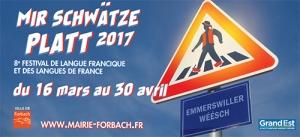 2017_festival_platt_banniere_19295.jpg